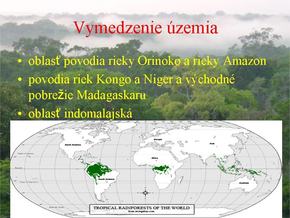 Bióm - tropické dažďové lesy